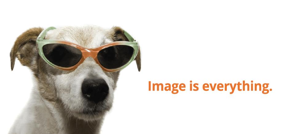 CreativeGroove_dog_2-01